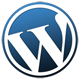 Wordpress MSP Website